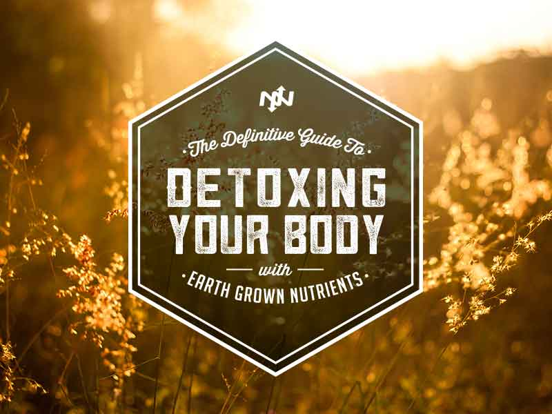 The Definitive Guide to Detoxing Your Body