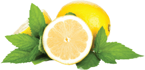 Lemon Mint Flavor EGN